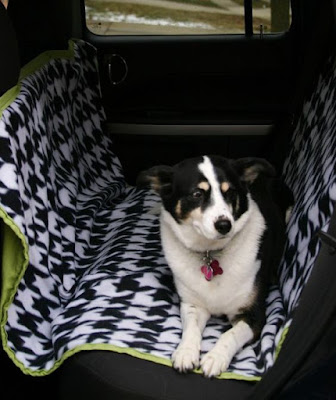 i love graff okemos 7 ways to pet proof your car. Black Bedroom Furniture Sets. Home Design Ideas