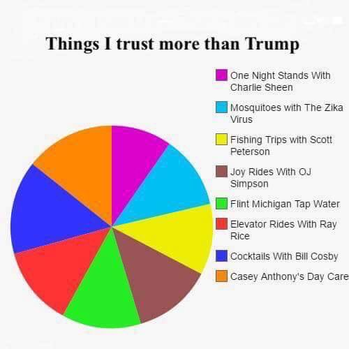 Live from my brothers basement pie chart that could apply to either pie chart that could apply to either presidential candidate ccuart Image collections