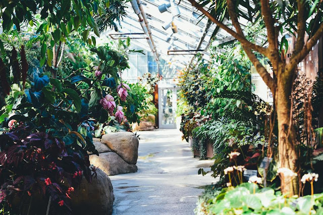 Kosakata Nama-nama Alat Untuk Berkebun Dalam Bahasa Inggris