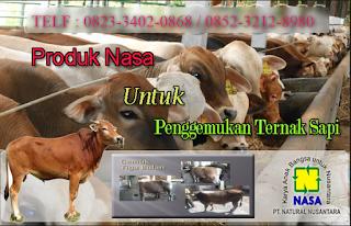 AGEN NASA DI Halongonan, Padang Lawas Utara - TELF 082334020868