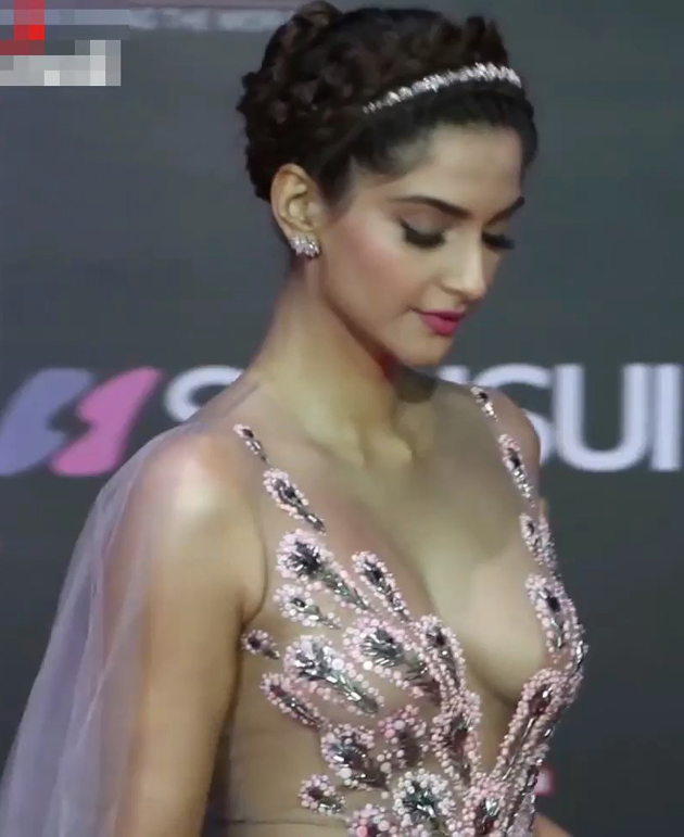 Sonam Kapoor Hot Pics At Stardust Awards 2016 - Kapoor -3815