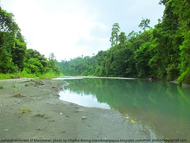 sightseeibg tour in the forest of Manokwari