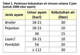 tabel perkiraan kebutuhan air minum untuk 1000 ekor ayam