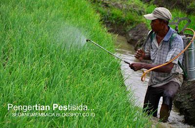Pestisida