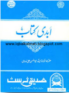 Abadi Ktab by Abul Hasan Ali Nadvi