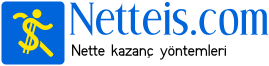 netteis.com