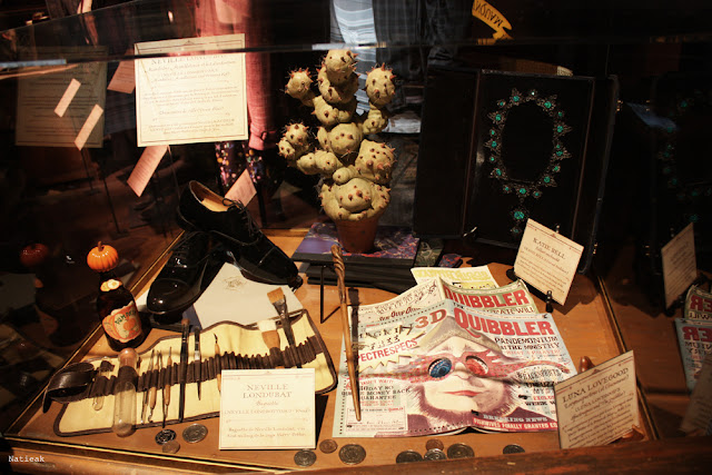 objet Neville Londubat, Luna et Katie Bell exposition Harry Potter