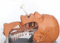 Supraglottic Airway Laryngopharyngeal Tube (S.A.L.T.)