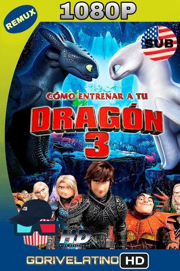 Cómo Entrenar a tu Dragón 3 (2019) BDRemux 1080p SUBTITULADO MKV