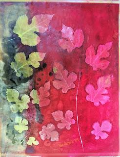 Solarfast prints_Sue Reno_ Image 20