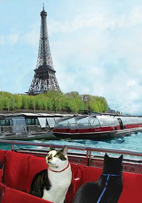 Cats on the Seine, Cat Art by Deborah Julian
