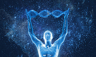 DNA Hakkında Kısa Bilgi