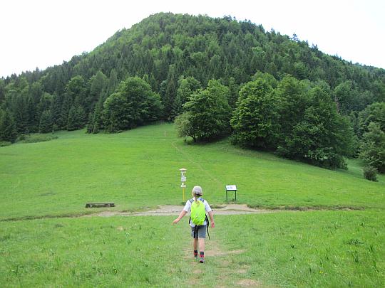 Przełęcz Vrch Podžiar (745 m n.p.m.). Po drugiej stronie wznosi się masyw Boboty (1085 m n.p.m.).