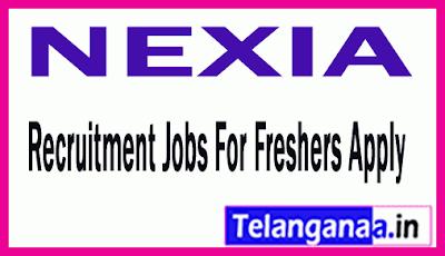 NEXIA Recruitment Jobs For Freshers Apply