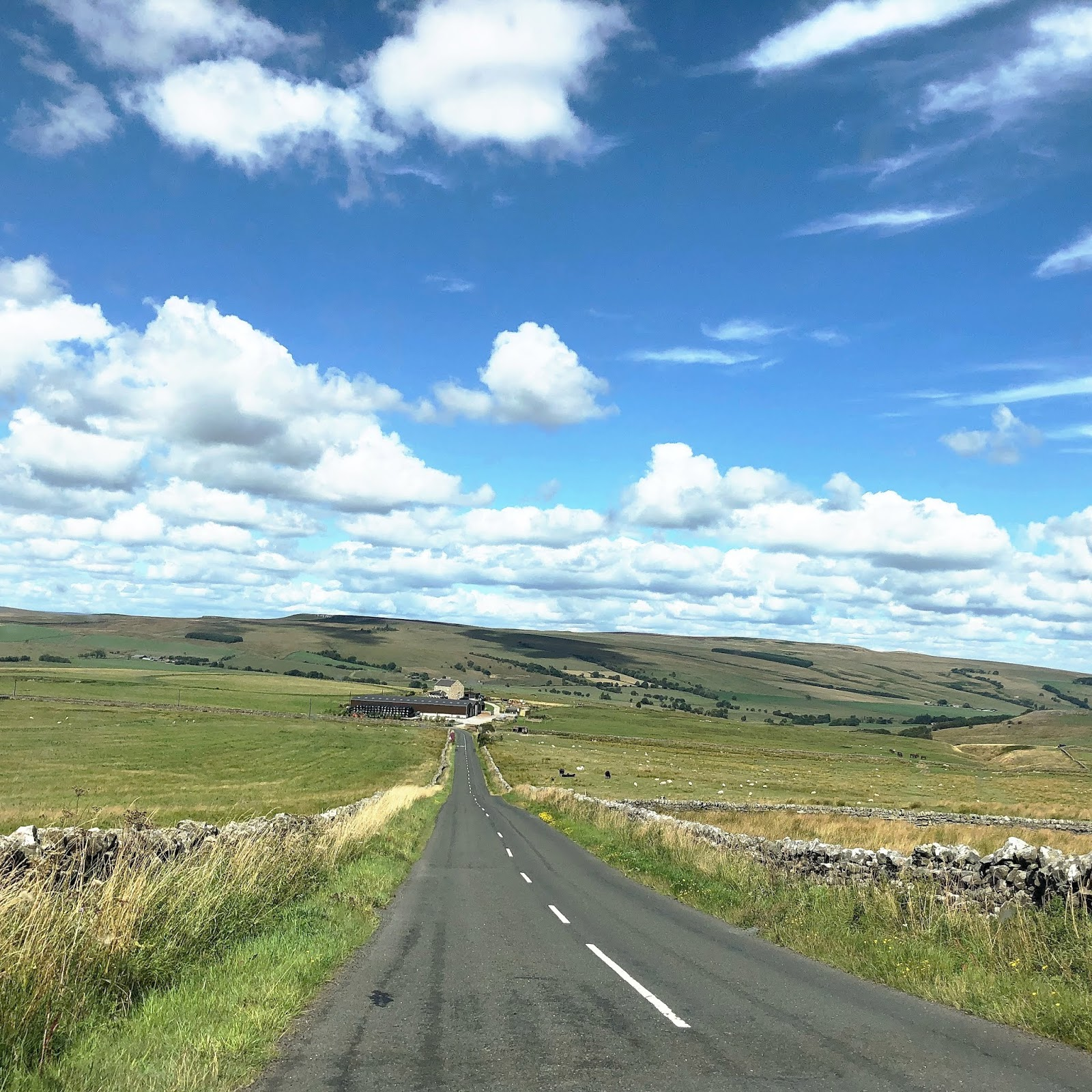 My August Days - A68