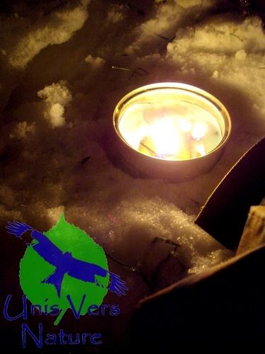 bougie abri couverture survie grand froid neige