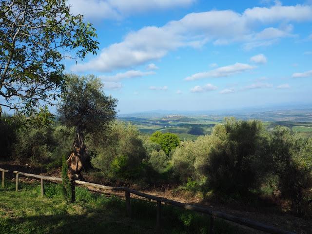 Toskánsko, okolí Montalcino