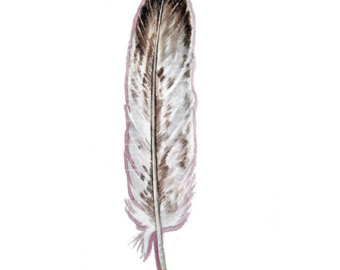 Bald Eagle Feather Tattoos