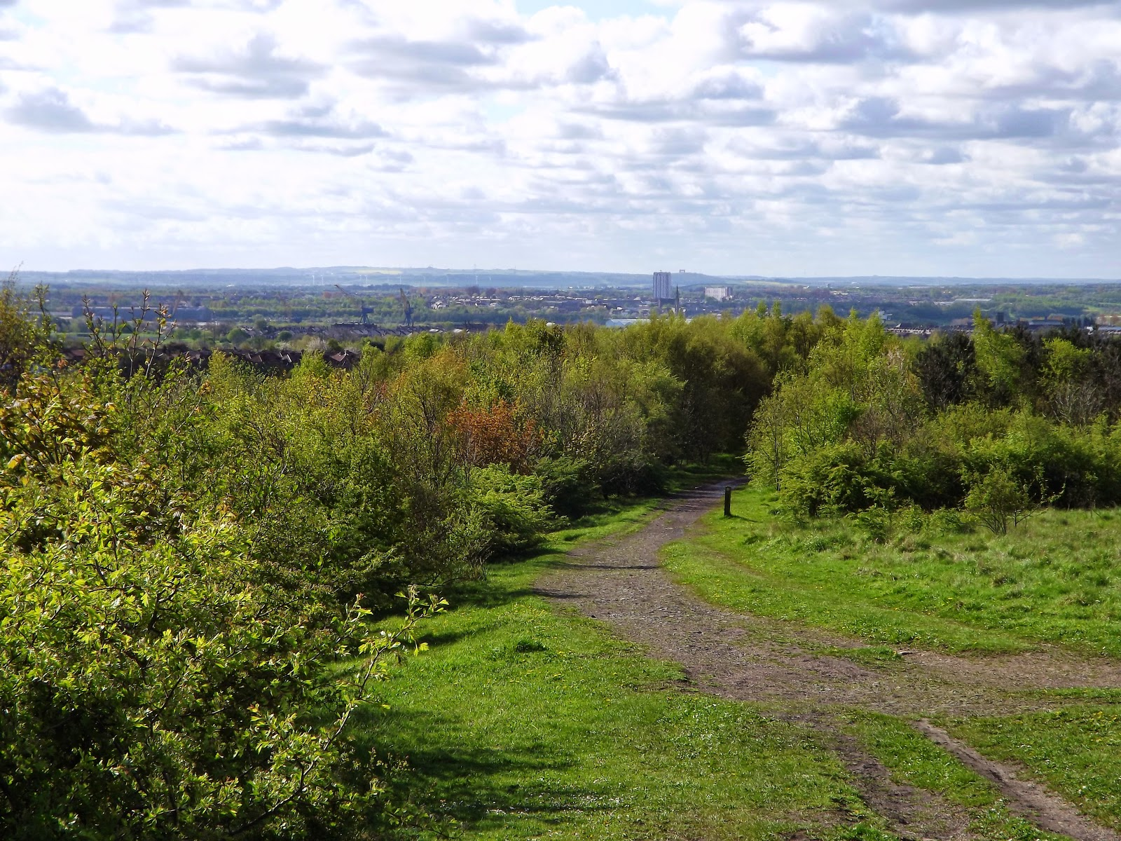 Northumbrian Images: Rising Sun Country Park North Tyneside