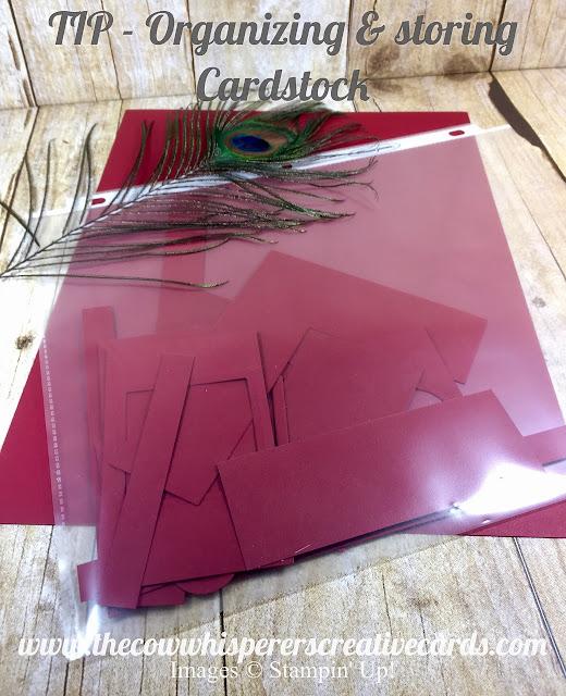 tip, organize, organing, storage, cardstock, card stock, paper, craft paper, stampin up, designer series paper