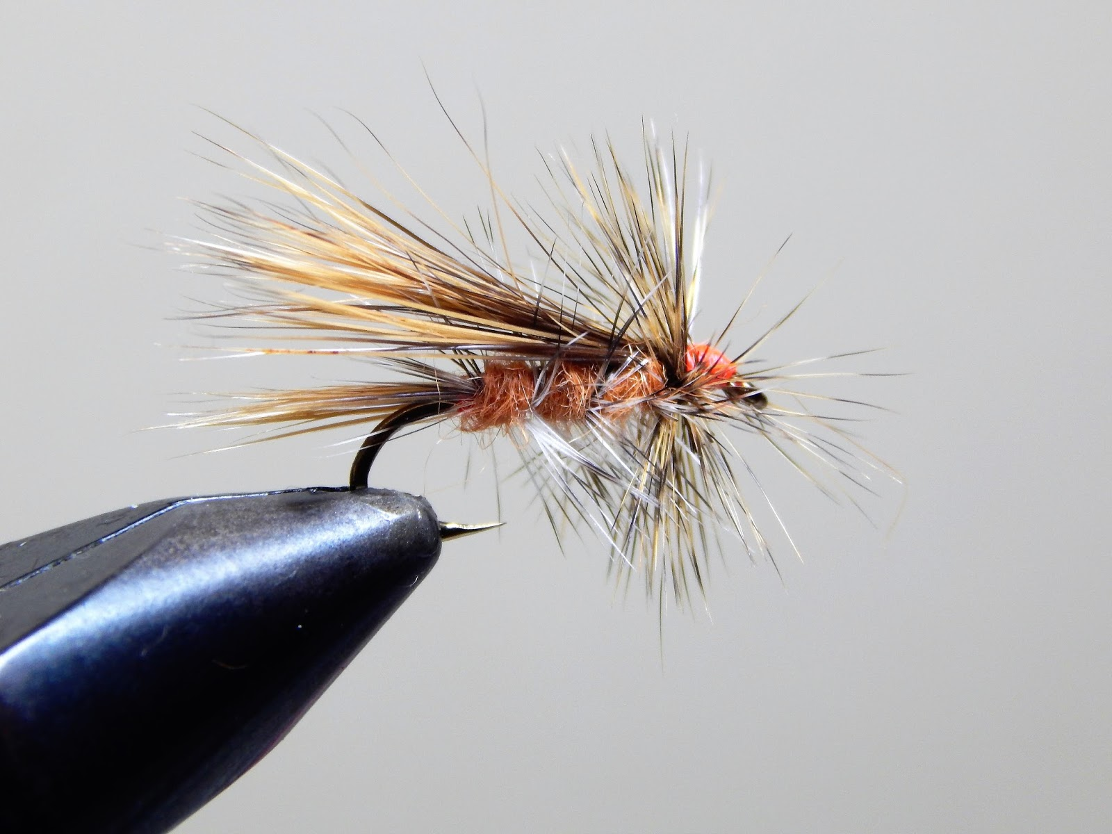 Small stream reflections the ausable stonefly mystery for Upcountry fly fishing