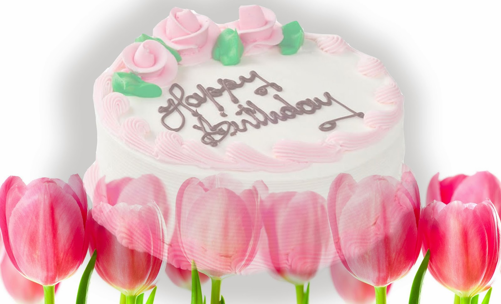 Birthday Wishes With Images Free Download Ltt