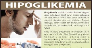 hipoglikemi-www.healthnote25.com