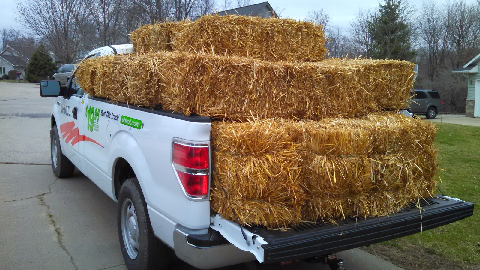 Bringing Home Straw Bales