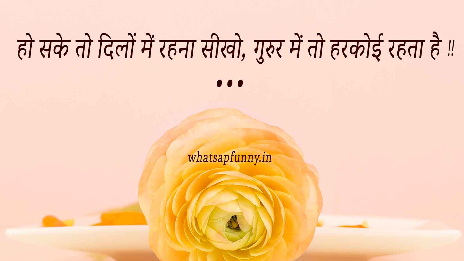 whatsapp dp on life - hindi quotes
