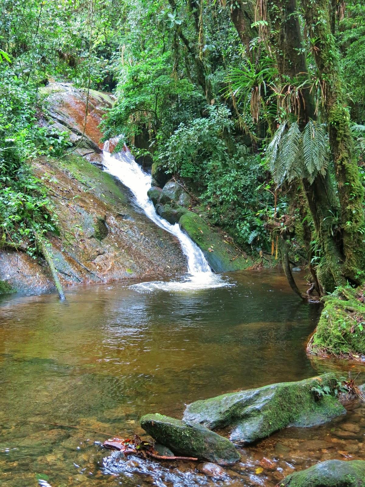 Poção das Raízes, mais uma cachoeira no Vale do Alcantilado, em Visconde de Mauá.