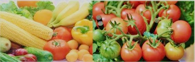 14 Vegetable Crops for Health Benefits