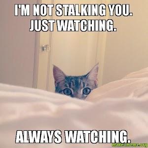 Bahaya Stalking