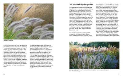 Plantas vivaces para jardines naturalistas