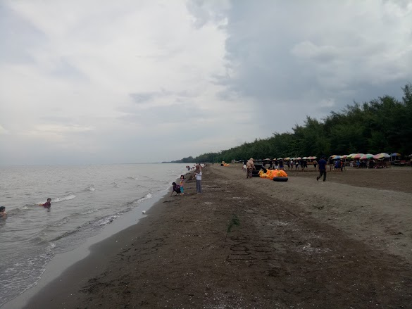 7 Alasan Sering Mengisi Waktu Liburan di Pantai Widuri