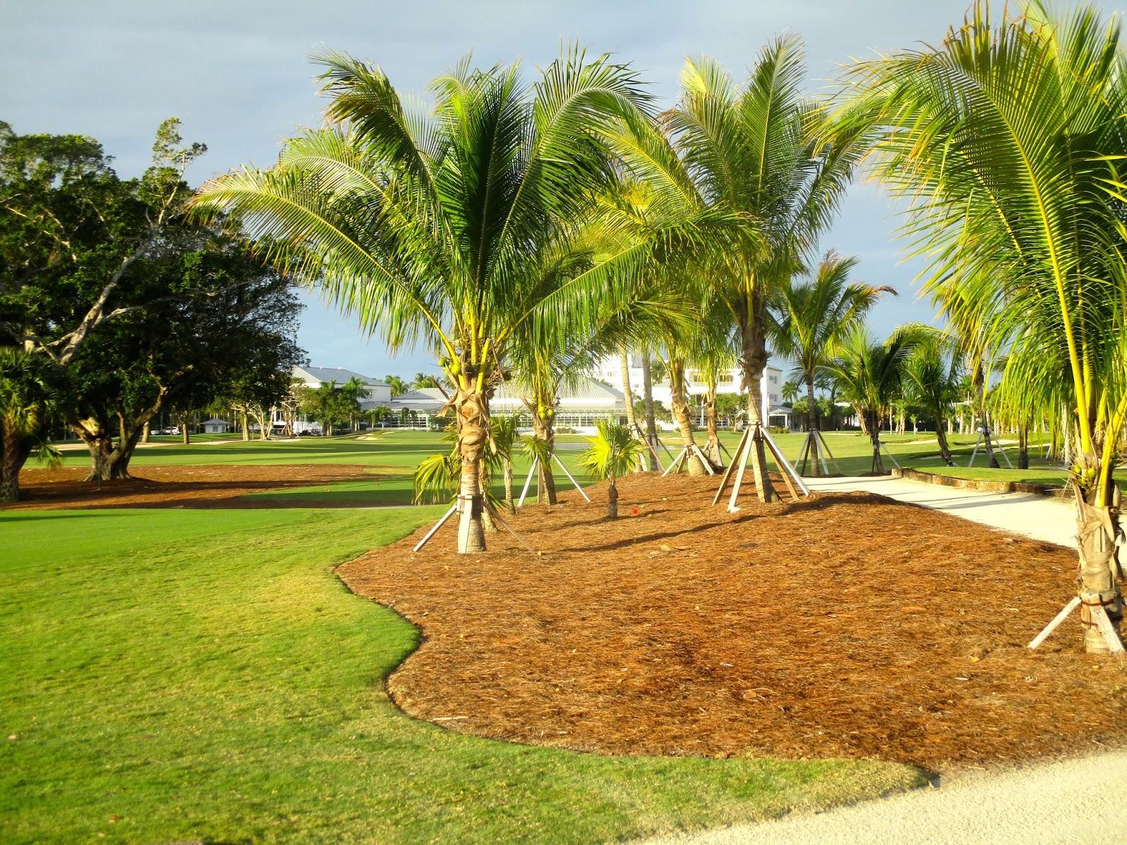 The Golf Travel Guru: On Location: Naples Beach Hotel & Golf Club