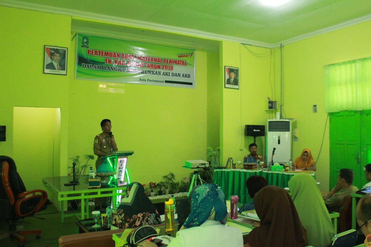 Dinkes Sinjai Gelar Pertemuan Bahas Audit Maternal Perinatal
