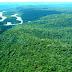 Juiz federal suspende qualquer decreto sobre extinção da Renca na Amazônia