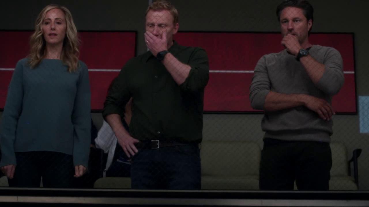 Sin Fin De Frases Anatomía De Grey Temporada 14 Season 14
