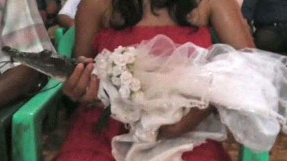 crocodile wearing a wedding gown