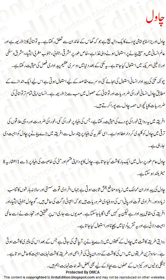 rice essay urdu chawal par mazmoon urdu essay mazmoon urdu speech  rice essay urdu chawal par mazmoon