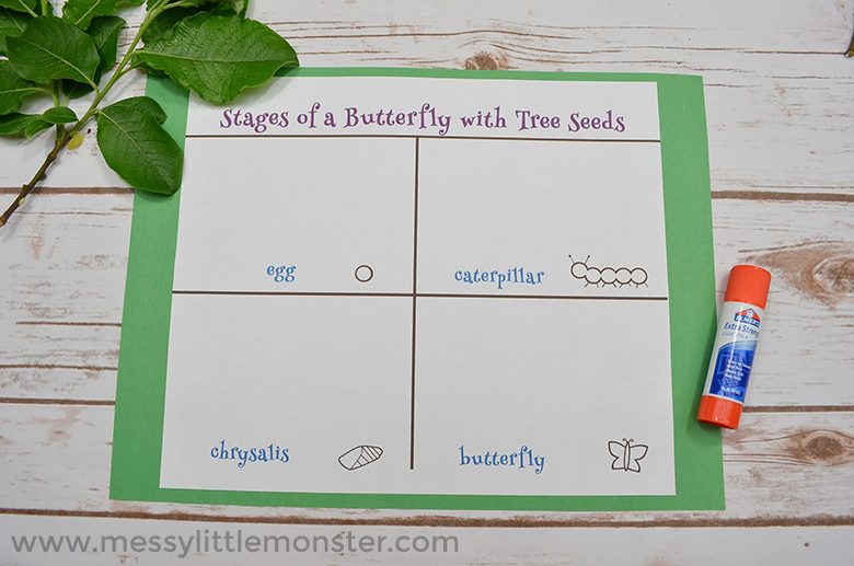 Free printable butterfly life cycle activity for kids