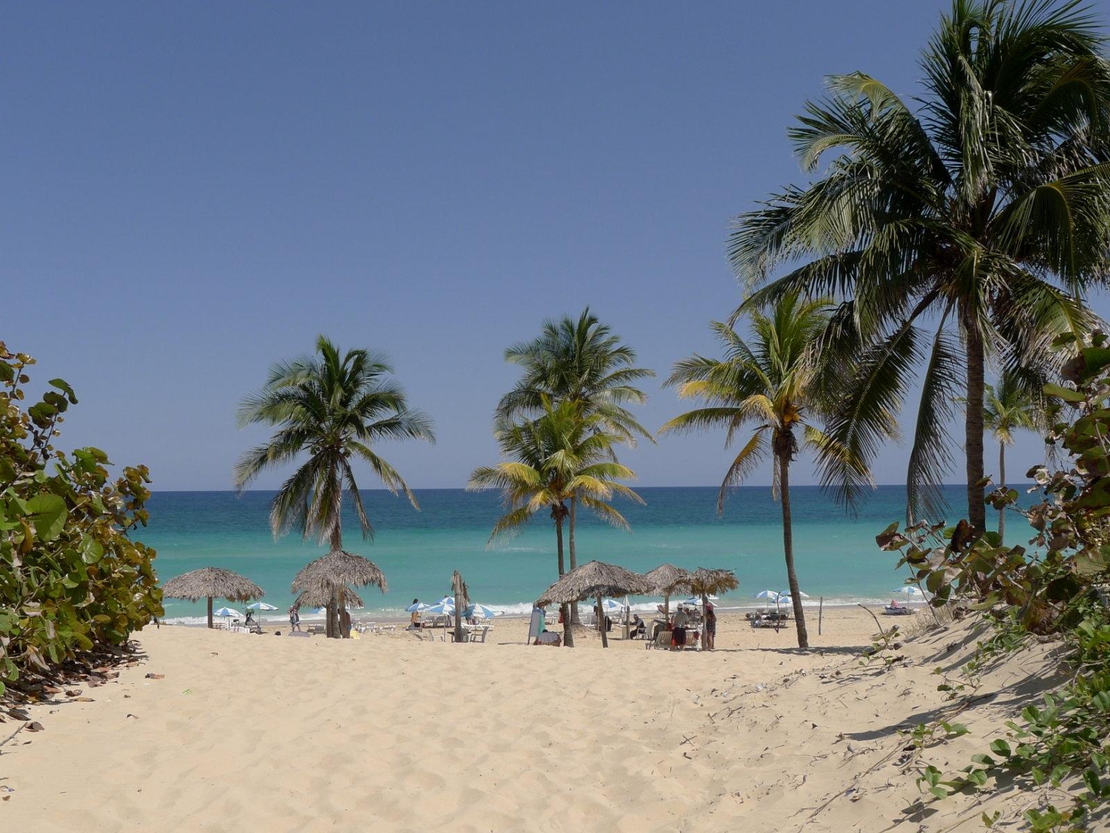 Dünengürtel, Sandstrand, Palmen, Meer