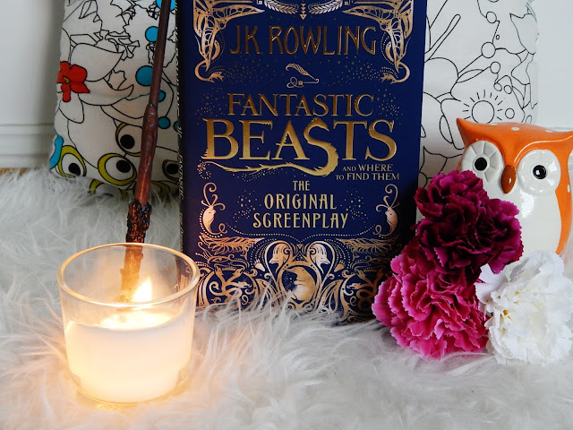 Fantastic Beasts And Where To Find Them No Spoiler Screenplay Review | sprinkledpages