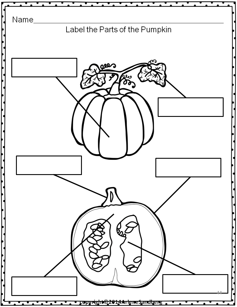 Classroom Freebies: Pumpkin Parts Picture/Fact Cards and