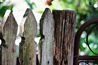 fence wood for backyard, cheap fence wood toronto, cheap fence wood san fransisco