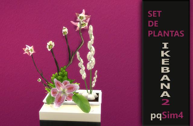 planta Ikebana detalle planta numero 3