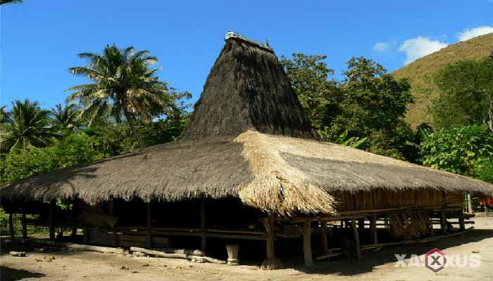 Gambar rumah adat Indonesia - Rumah adat NTT (Nusa Tenggara Timur) atau Rumah Musalaki