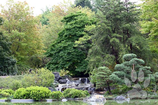 Canada-Quebec-Montreal-jardin-botanique-jardin-japonais
