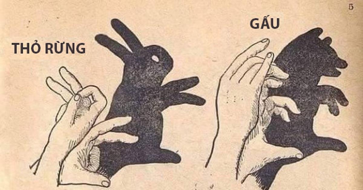 Hướng dẫn cách tạo hình các con vật bằng bàn tay
