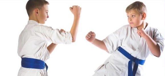 Enseñanza de los Deportes de Lucha en adolescentes de ESO (1ª parte)